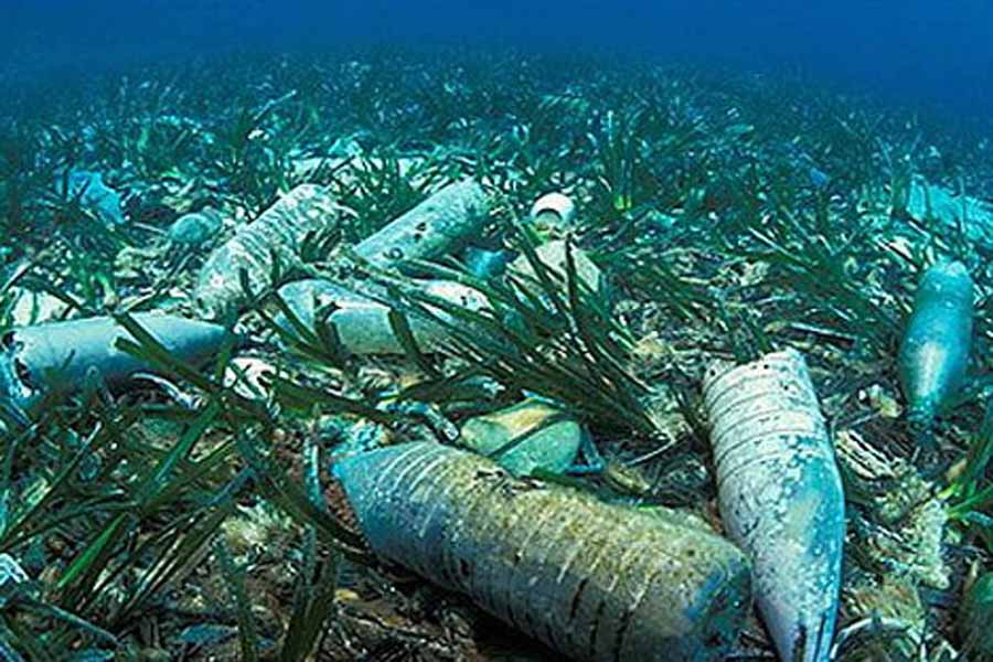 prevention from overfishing in oceans