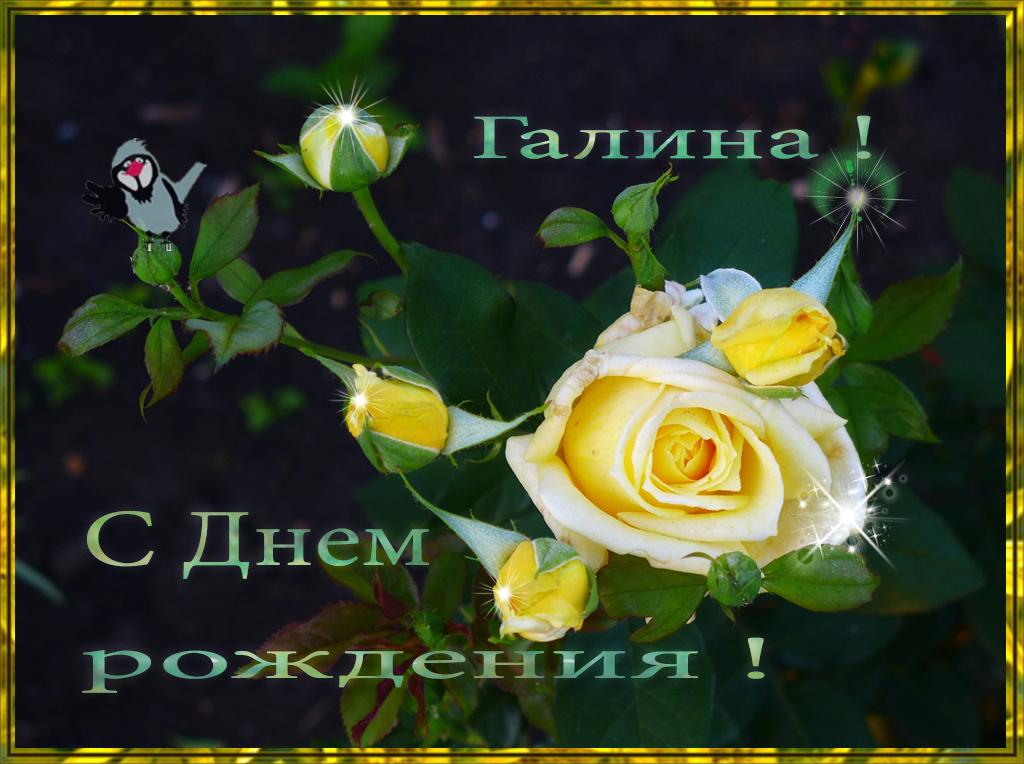 Открытки с Днем Рождения Галина