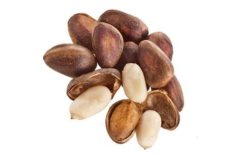 кедровые орехи польза и вред