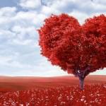 Больше чем любовь