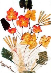 gerbarij-iz-cvetov