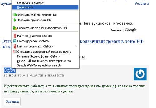 Statya-domeni-rf-reg-1